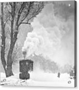 A Winter's Tale Acrylic Print