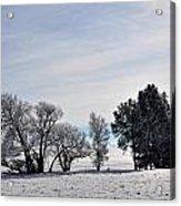 A Wintery Day Acrylic Print