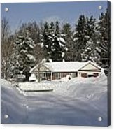 A Wintery Look Up A Driveway On Conifer Drive Acrylic Print