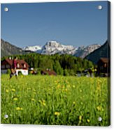 A Woman Walks Through An Alpine Meadow Acrylic Print