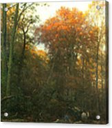A Woodcutter At Work Acrylic Print