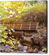 A Woodsy Walk In Golden Fall Color Acrylic Print