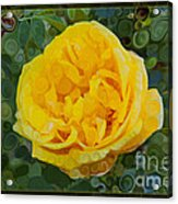 A Yellow Rose Abstract Painting Acrylic Print
