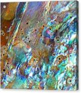 Abalone Abstract3 Acrylic Print