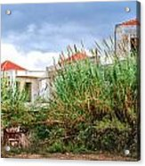 Abandoned Holiday Resort Acrylic Print