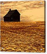 Abandoned Homestead Series Golden Sunset Acrylic Print
