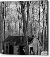 Abandoned Sugar Shack In Black And White Acrylic Print