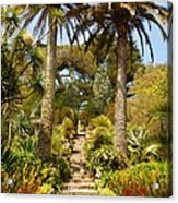 Abbey Gardens Of Tresco On The Isles Of Scilly Acrylic Print