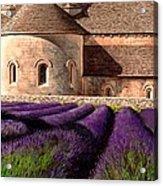 Abbey Lavender Acrylic Print