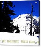 Above The Timberline  Mt Hood  Oregon Acrylic Print by Glenna McRae