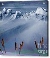 Above The Tree Line Acrylic Print by The Stone Age