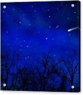 Above The Treetops Wall Mural Acrylic Print