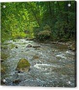 Abram's Creek Gsmnp Acrylic Print by Paul Herrmann