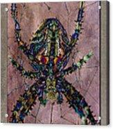 Abstrachid 3 Acrylic Print
