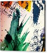 Abstract - Splashes Of Color Acrylic Print