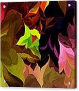 Abstract 012014 Acrylic Print
