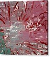 Abstract 101 Acrylic Print