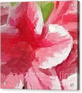 Abstract 106 Pink Painterly Flowers Acrylic Print