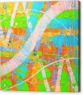 Abstract 23614  Diptych  II Acrylic Print