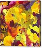 Abstract 46 Acrylic Print
