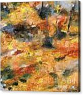 Abstract Autumn 1 Acrylic Print