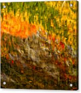 Abstract Autumn Reflections  Acrylic Print