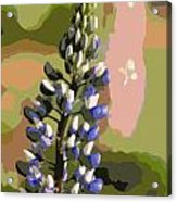 Abstract Blue Lupine Acrylic Print