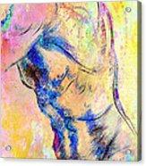 Abstract Bod 6 Acrylic Print