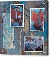 Abstract Branch Collage Trio Acrylic Print