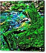 Abstract Brook Bits 56 Acrylic Print