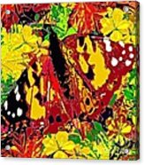 Abstract Butterfly #3 Autumn Acrylic Print