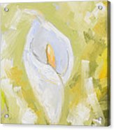Abstract Calla Lily Acrylic Print