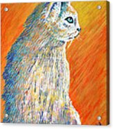 Jazzy Abstract Cat Acrylic Print