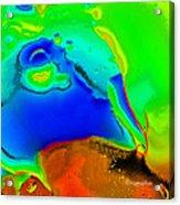 Abstract Color Fun Acrylic Print