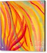 Abstract Colorful Lines Acrylic Print