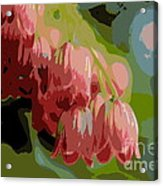 Abstract Coral Bells Acrylic Print