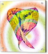 Abstract Crazy Daisies - Flora - Heart - Rainbow Circles - Painterly Acrylic Print
