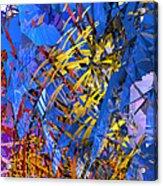 Abstract Curvy 11 Acrylic Print