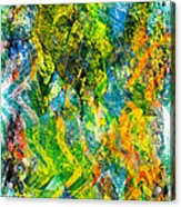 Abstract - Emotion - Admiration Acrylic Print