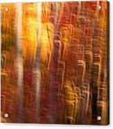 Abstract Fall 7 Acrylic Print