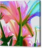 Abstract Floral Acrylic Print