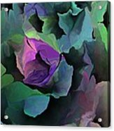 Abstract Floral Expression 041213 Acrylic Print