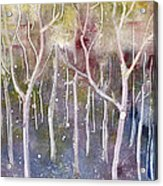 Abstract Forest Acrylic Print