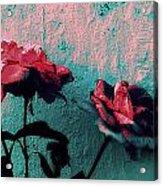 Abstract Hdr Roses Acrylic Print
