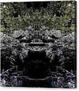 Abstract Kingdom Acrylic Print