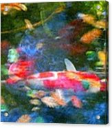 Abstract Koi 1 Acrylic Print