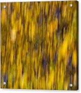 Abstract Of Autumn Gold Acrylic Print