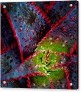 Abstract Of Bromeliad Acrylic Print