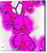 Abstract Orchid 1 Acrylic Print