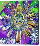 Abstract Passion Flower Acrylic Print